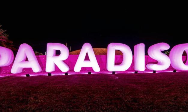 NW – Paradiso Festival – Recap