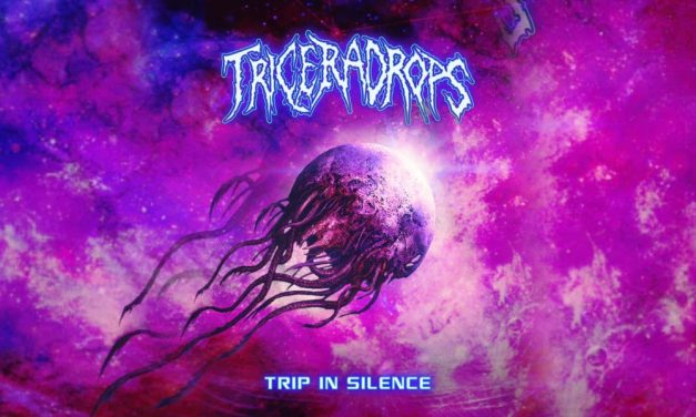 Trip In Silence EP – Triceradrops